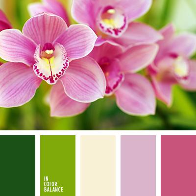 paleta-de-colores-1429