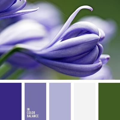 paleta-de-colores-1442