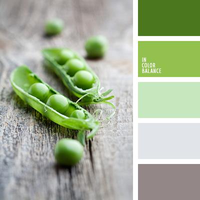 paleta-de-colores-1444