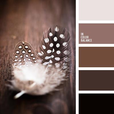 paleta-de-colores-1449