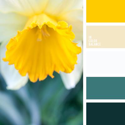 paleta-de-colores-1451