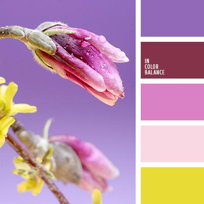paleta-de-colores-1453