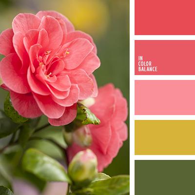 paleta-de-colores-1455