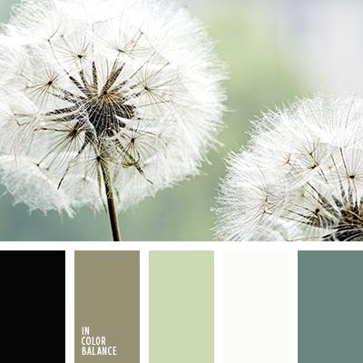 paleta-de-colores-1461