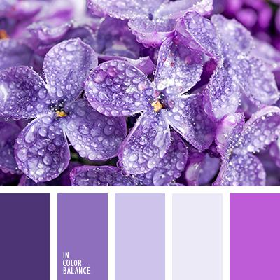 paleta-de-colores-1463