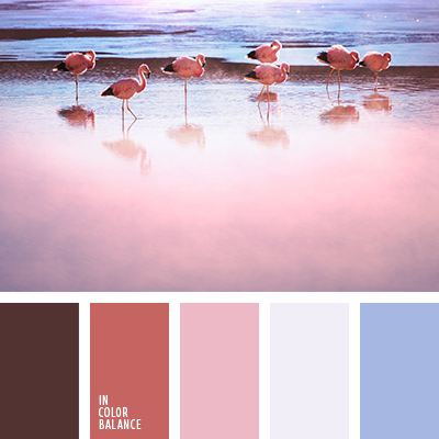 paleta-de-colores-1468
