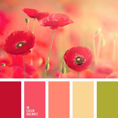 paleta-de-colores-1477