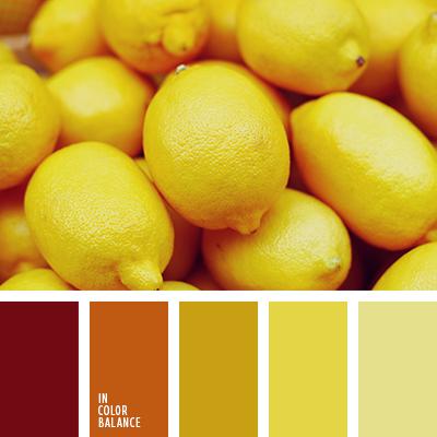 paleta-de-colores-1480