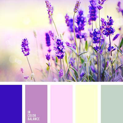 paleta-de-colores-1492