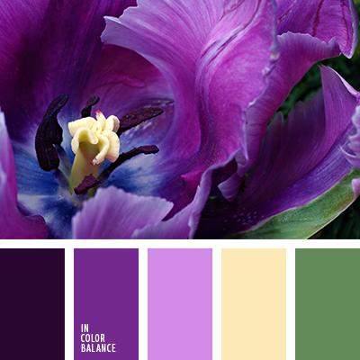 paleta-de-colores-1506