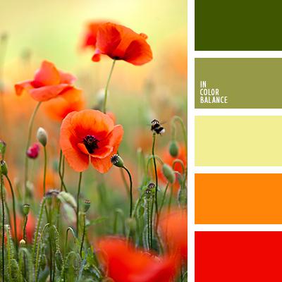paleta-de-colores-1513