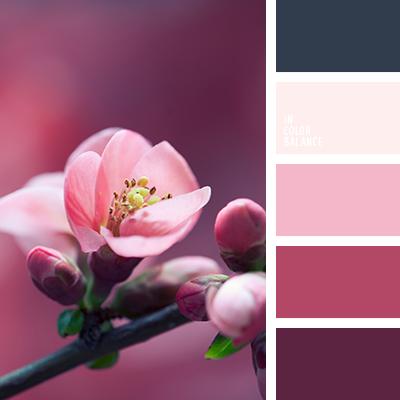 paleta-de-colores-1532