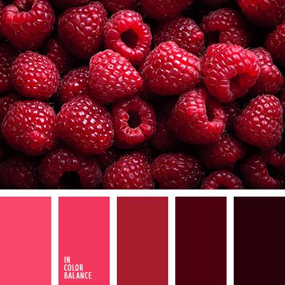paleta-de-colores-1547