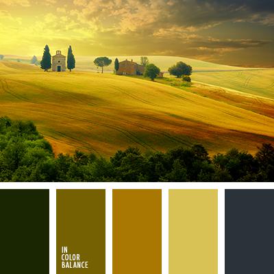 paleta-de-colores-1571