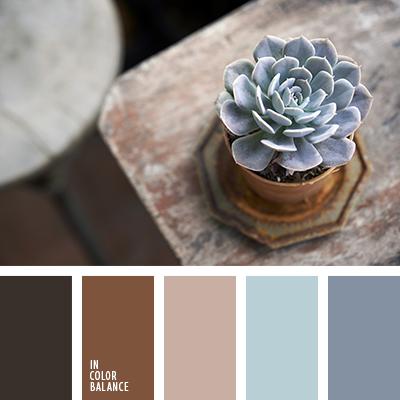 paleta-de-colores-1573