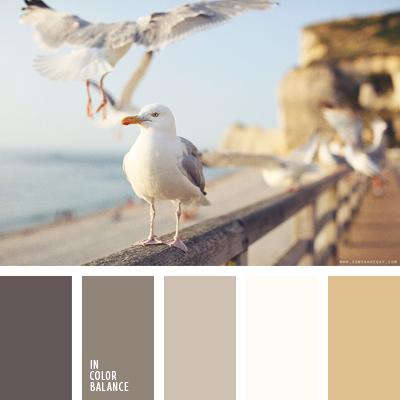 paleta-de-colores-1576