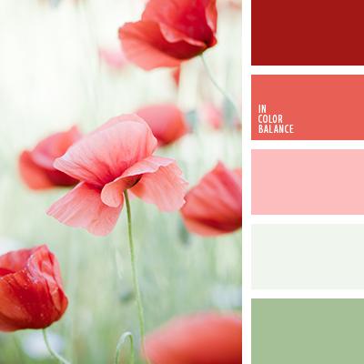 paleta-de-colores-1580