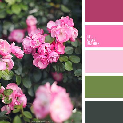 paleta-de-colores-1592