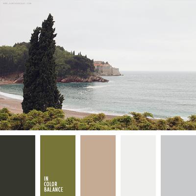 paleta-de-colores-1588