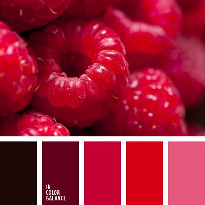 paleta-de-colores-1593