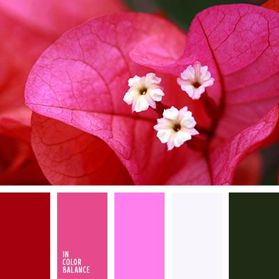 paleta-de-colores-1600