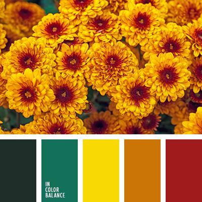 paleta-de-colores-1636