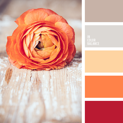 paleta-de-colores-1651