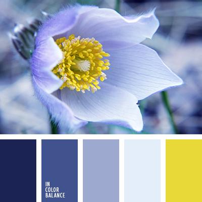 paleta-de-colores-1844