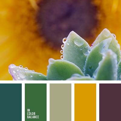 paleta-de-colores-1864