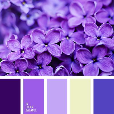 paleta-de-colores-1889