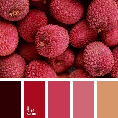 paleta-de-colores-2025