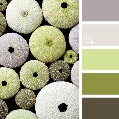 paleta-de-colores-2038
