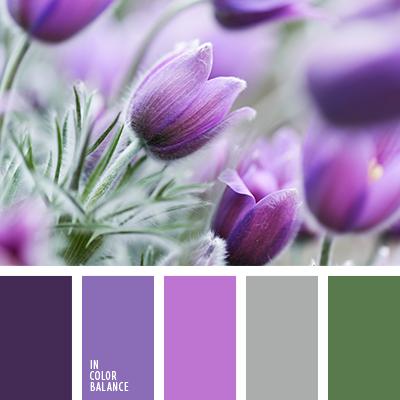 paleta-de-colores-2047