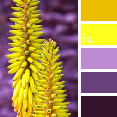 paleta-de-colores-2052