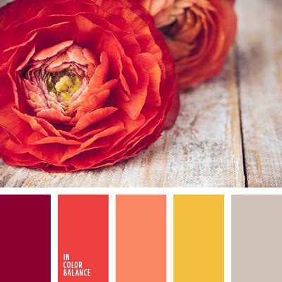 paleta-de-colores-2056