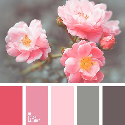 paleta-de-colores-2058