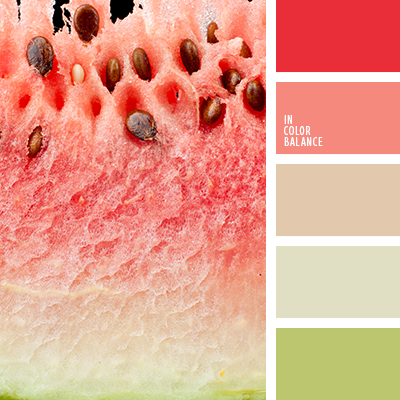 paleta-de-colores-2069