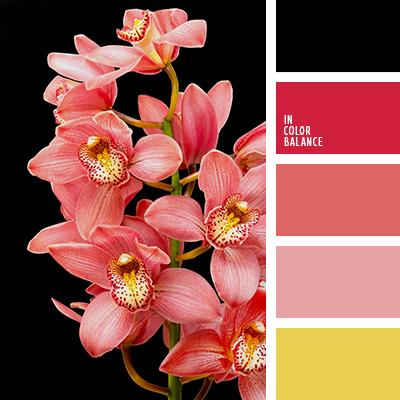 paleta-de-colores-2070