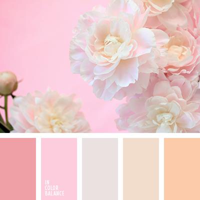 paleta-de-colores-2071