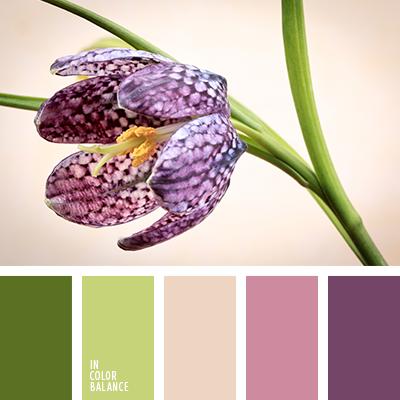 paleta-de-colores-2072
