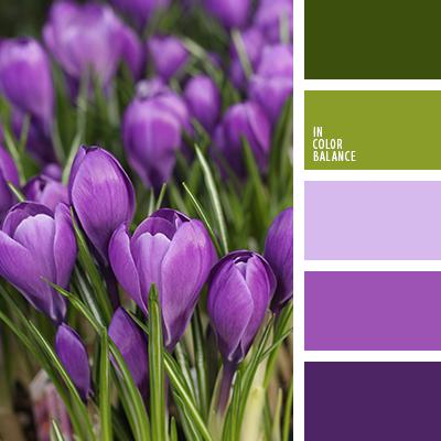 paleta-de-colores-2076