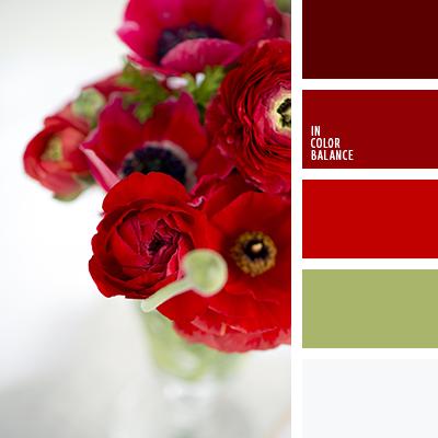 paleta-de-colores-2079