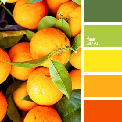 paleta-de-colores-2092