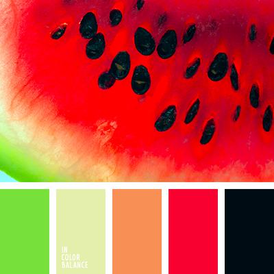 paleta-de-colores-2093