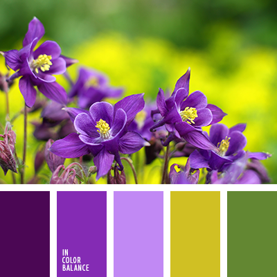 paleta-de-colores-2110