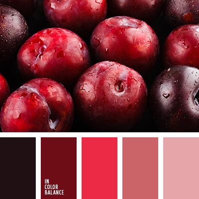 paleta-de-colores-2113