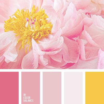 paleta-de-colores-2114