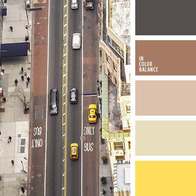 paleta-de-colores-2116