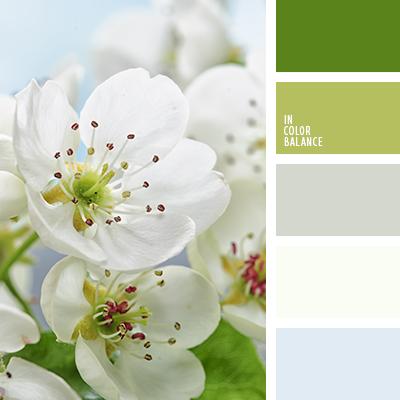 paleta-de-colores-2117