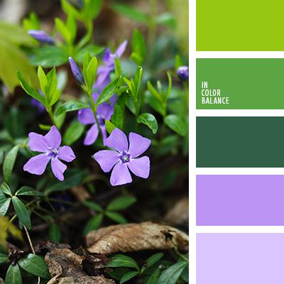 paleta-de-colores-2119
